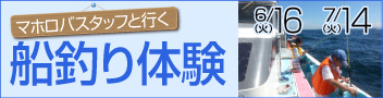 マホロバスタッフと行く 船釣体験マホロバフィッシング倶楽部(送迎付き 先着20名!!)