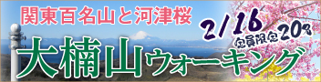 大楠山ウォーキング 2月16日(火)は関東百名山と早咲きの河津桜を楽しもう!