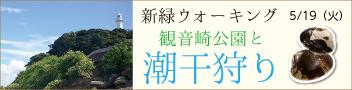 マホロバスタッフと歩く 新緑ウォーキング 観音崎公園と潮干狩り(バス送迎付き 先着20名!!)