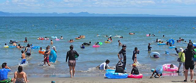 三浦海岸の賑わい