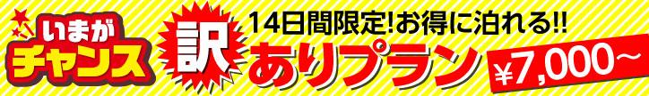 ★14日間限定!1620円引き★本館・夏の訳ありプラン♪最大16時間滞在